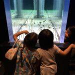 「都会で子育て」子供を1日預けてお出かけ♬一体いくらかかる?東京 VS バンコク