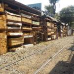 バンコク/スクムヴィットにある材木問屋へ行ってみよう!(クロントイ ロックホック)「バンコクお勧め」